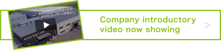 Company introductory video now showing